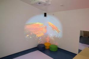 projector web